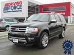 Ford Expedition V-6 cyl